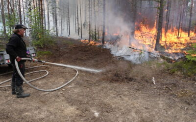 Possibilities to use the fire for nature management were discussed in the international conference